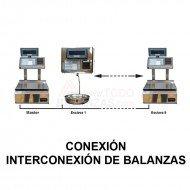 Interconexion Balanzas Bacsa B9