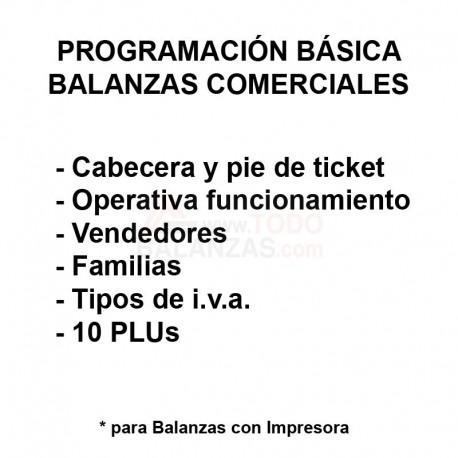 Programación Básica de Balanza Comercial
